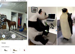 Google 3D Animals