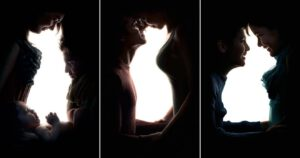 سگ، گربه و خرگوش