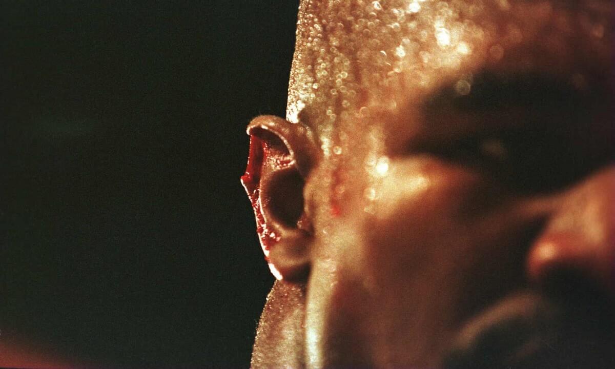 گوش راست ایواندر هالیفیلد پس از اینکه مایک تایسون در جریان مبارزه قهرمانی سنگین وزن جهان در لاس وگاس، آن را گاز گرفت