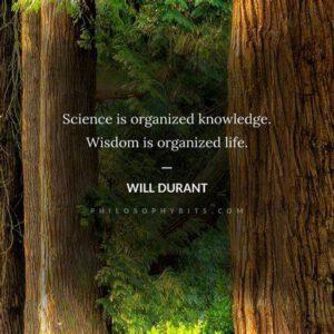 تفاوت دانش و خرد (حکمت): چند نقل قول عمیق