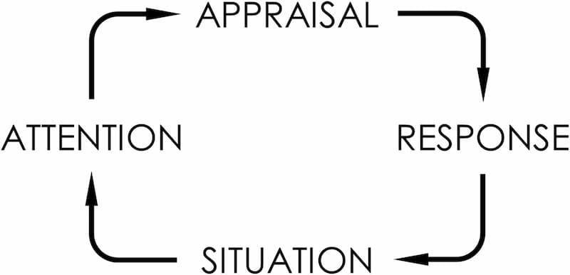 نمودار یک: 4 جزء هیجان
