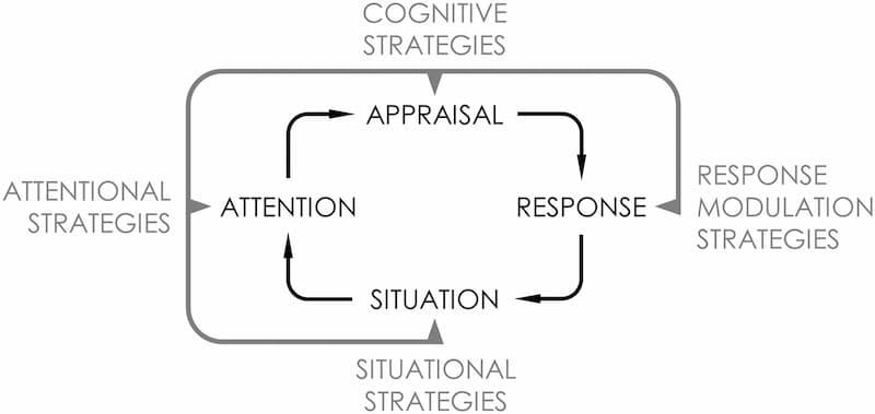 نمودار 3: استراتژیهای تنظیم هیجان