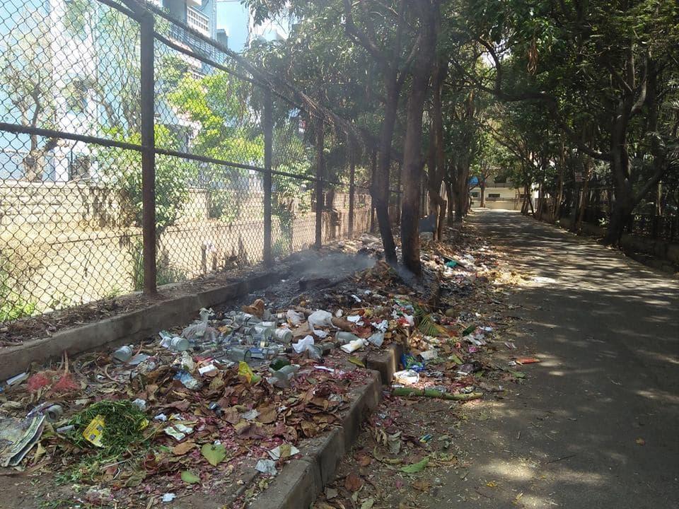 آشغال و نخاله ساختمانی باعث تضعیف درخت میشن